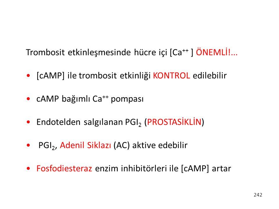 Trombosit etkinleşmesinde hücre içi [Ca++ ] ÖNEMLİ!...